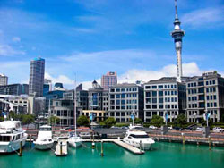 Skilled Workers Visa for New Zealand from Dubai, UAE